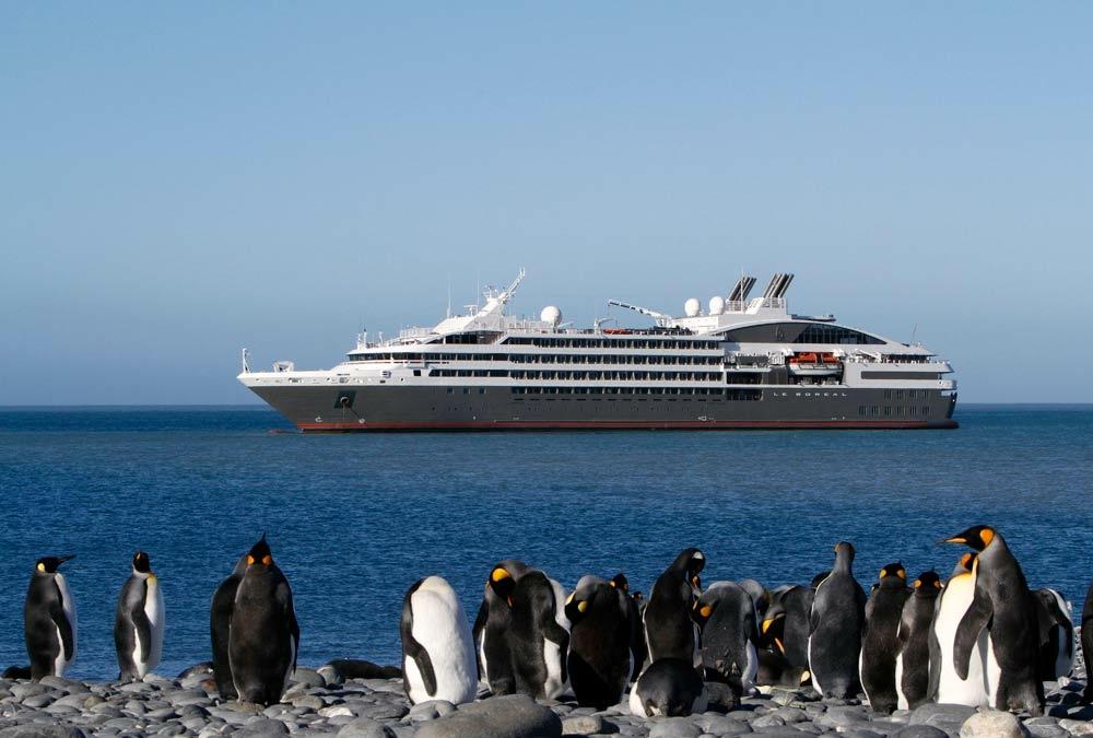 Superyacht, Antarktis, Königspinguine
