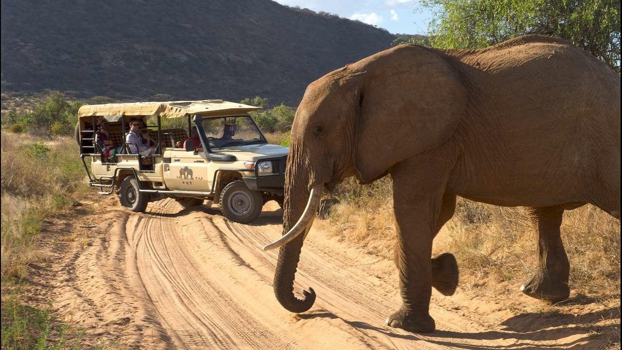 Auf Safari in Samburu Kenia